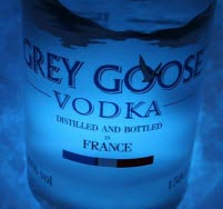Grey-Goose