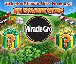 Miracle-Gro-B