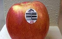 Apple-Sticker