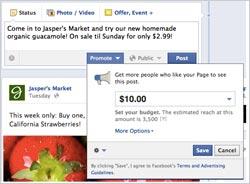 Facebook-Strawberry-B2