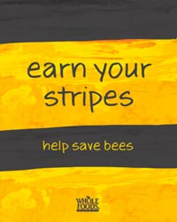 Help-save-bees-B