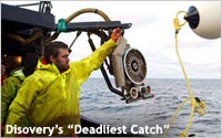 Disovery-deadliest-catch-A