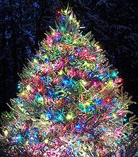 Christmas-Tree-B2