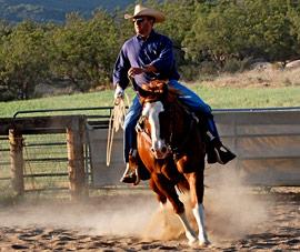 Horse-Riding-B