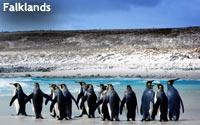 Falklands-A