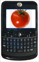 Smartphone-Tomato-B